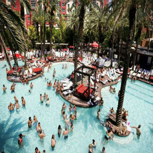 Flamingo beach club go pool nightlife shows for Pool show las vegas november